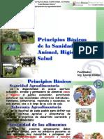 Tema 1 Principios Basicos de La Sanidad Animal