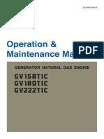 Manual Doosan 200 kva gas.pdf