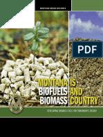 Proceso de Produccion Biodiesel - (Informe Colombiano)