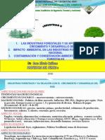 DESARROLLO FORESTAL E IMPACTO DE INDUSTRIAS FORESTALES 2016 Rosa.ppt