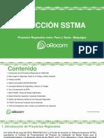 Inducción Sstma Proyectos Regionales v2