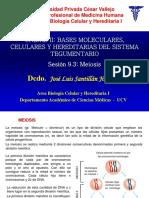 Meiosis i II