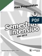 sin_2013_t_01.pdf