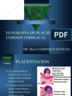 Ecografia de Placenta