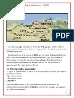 raport 2.pdf