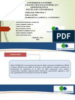 Diapositivas Ssosma Sac