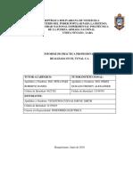 informe de Pasantia Jorvic Vicentino (Reparado).docx