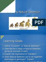 Darwin Natural Selection 1xwxo3e