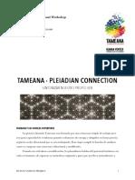 392638852-Manual-Tameana-2-pdf.pdf