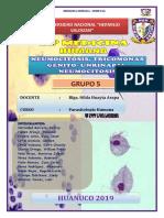 Neumocistosis-Tricomoniasis Genitourinario