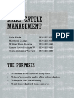 Dairy Cattle Management
