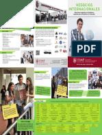 Brochure Administracion de Negocios Internacionales