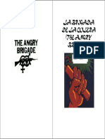 La brigada ANGRY