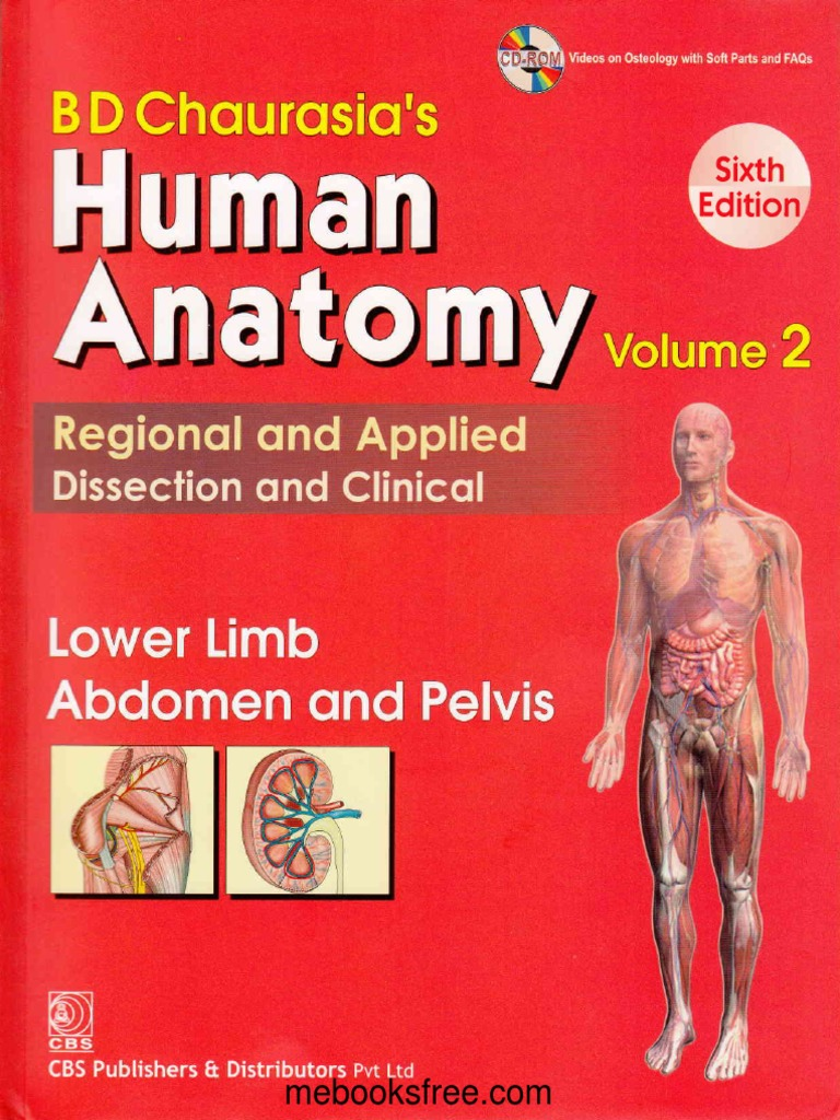 bd chaurasia anatomy 7th edition pdf free download