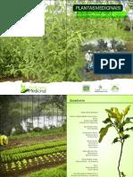 PLANTAS MEDICINAIS CULTIVO E MANEJO NA AGRICULTURA FAMILIAR