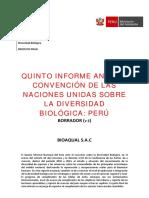 V-INFORME-CDB-v3.1.pdf