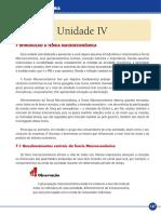 Elementos de economia - Livro-texto - Unidade IV.pdf