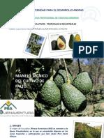Cultivos Tropicales. 7 Cultivos Industriales Alimenticios