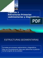 Cap 1 Estructuras primarias Sedimentarias.pdf