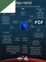 mapa mental hipotalamo-hipofise