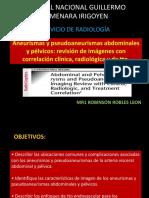 Imagen de Aneurismas y Pseudoaneurismas Abdominales y Pélvicos