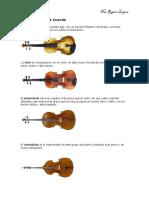 254739431 Instrumentos de Cuerda