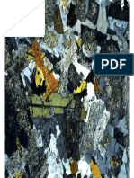 Diorite Thin Section