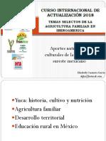 Aportes Nutritivos y Culturales de La Yuca en El Sureste Mexicano - MC. Elizabeth Casanova