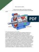Motor_Jaula_de_ardilla.docx