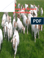 basic of goat farming in india