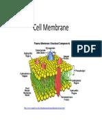 Lab4 Part5 Membranes