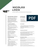 CV Nicolás Loza
