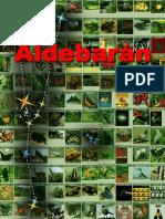 Manual Aldebaran