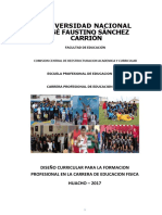 DISEÑO CIRRICULAR EPEFYD.docx