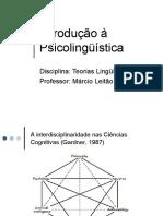 INTRODUCAO.A.PSICOLINGUISTICA.1254057309.pdf