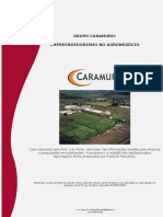 07-Mercado Brasileiro-Caramuru.pdf