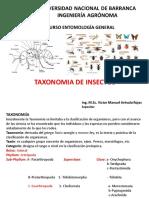 Clase VIII Teórica. Taxonomía de Insectos I.