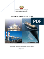 Natural Gas project