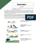 ecologia 2019