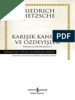 Insanca, Pek Insanca-2 - Friedrich Wilhelm Nietzsche