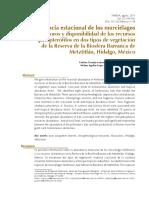 MURCIELAGO MI EXPOSICI.pdf