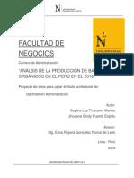 Análisis de la producción de bananos orgánicos.docx