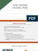 Modelo de Gestiòn de La Gestiòn de Programas e Instituciones