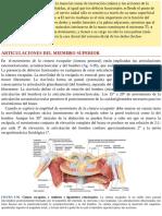 Articulaciones MS moore.pdf