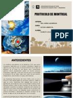 protocolodemontreal-141222223449-conversion-gate01.pdf