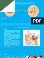 Semiologia De Boca y Oído