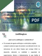 antifungicos resistencia