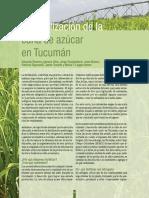 2009 - Nº 13 - La Fertilización de La Caña de Azúcar en Tucumán