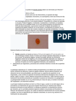 1148-Texto Del Manuscrito Completo (Cuadros y Figuras Insertos)-4769-1!10!20120923