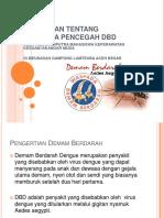 penyuluhan DBD